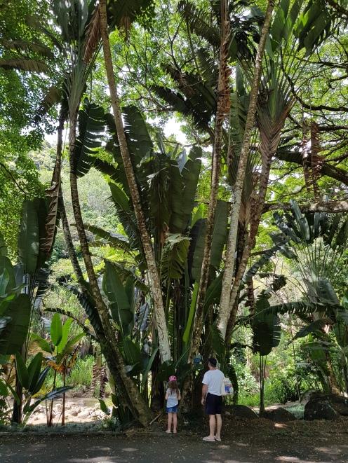 Incredible gardens